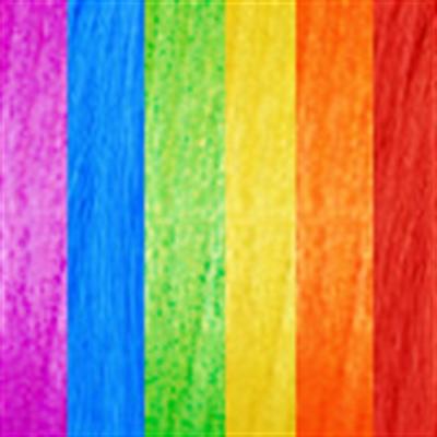 MS Rainbow